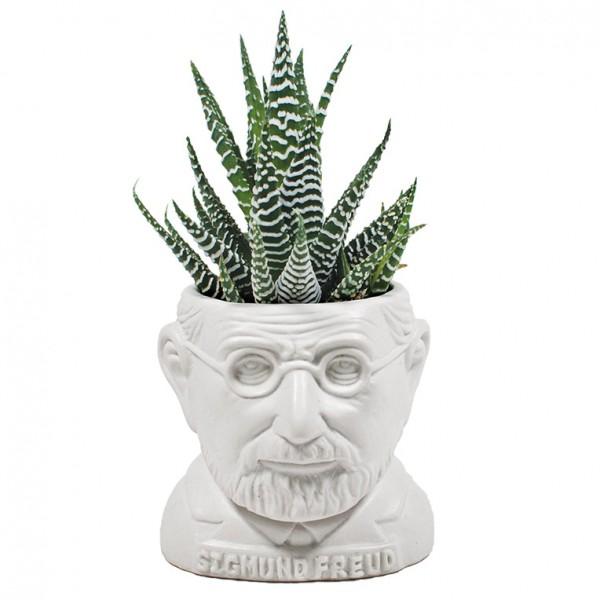 Sigmund Freud Blumentopf